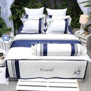Edena Cotton Đặc Biệt 523