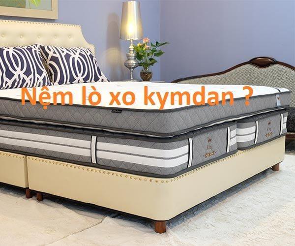 Nệm (Đệm) Lò Xo Kimdan 1